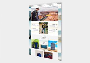 Laina Bags Website Image
